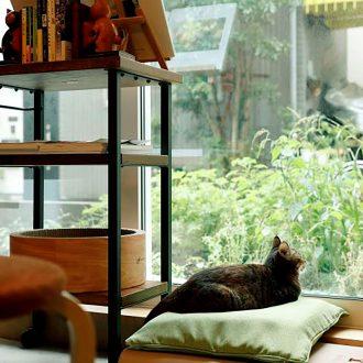 第1回これからの本屋めぐり「Cat's-Meow-Books」