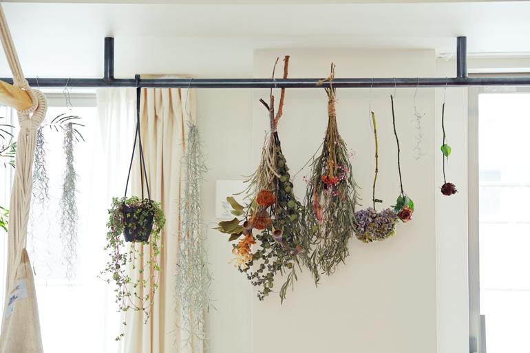 コの字の壁と土間と植物との暮らし